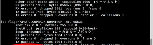 Raspberry PI 3 の無線LANに固定IPアドレスを設定する